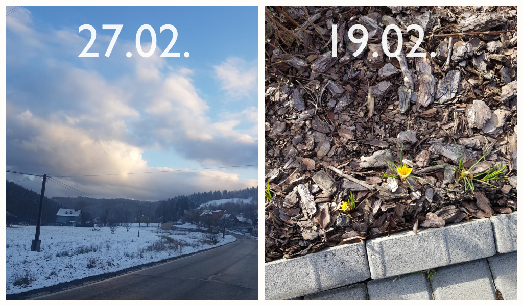 Foto dnia. Wiosna w Targanicach