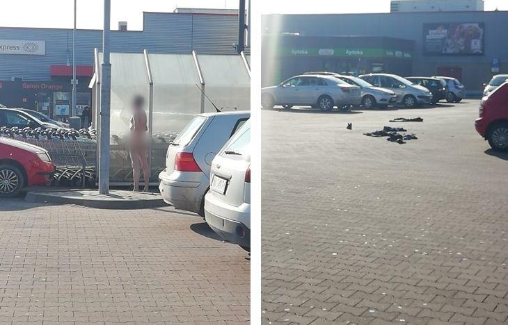 Golas na parkingu przed Kauflandem