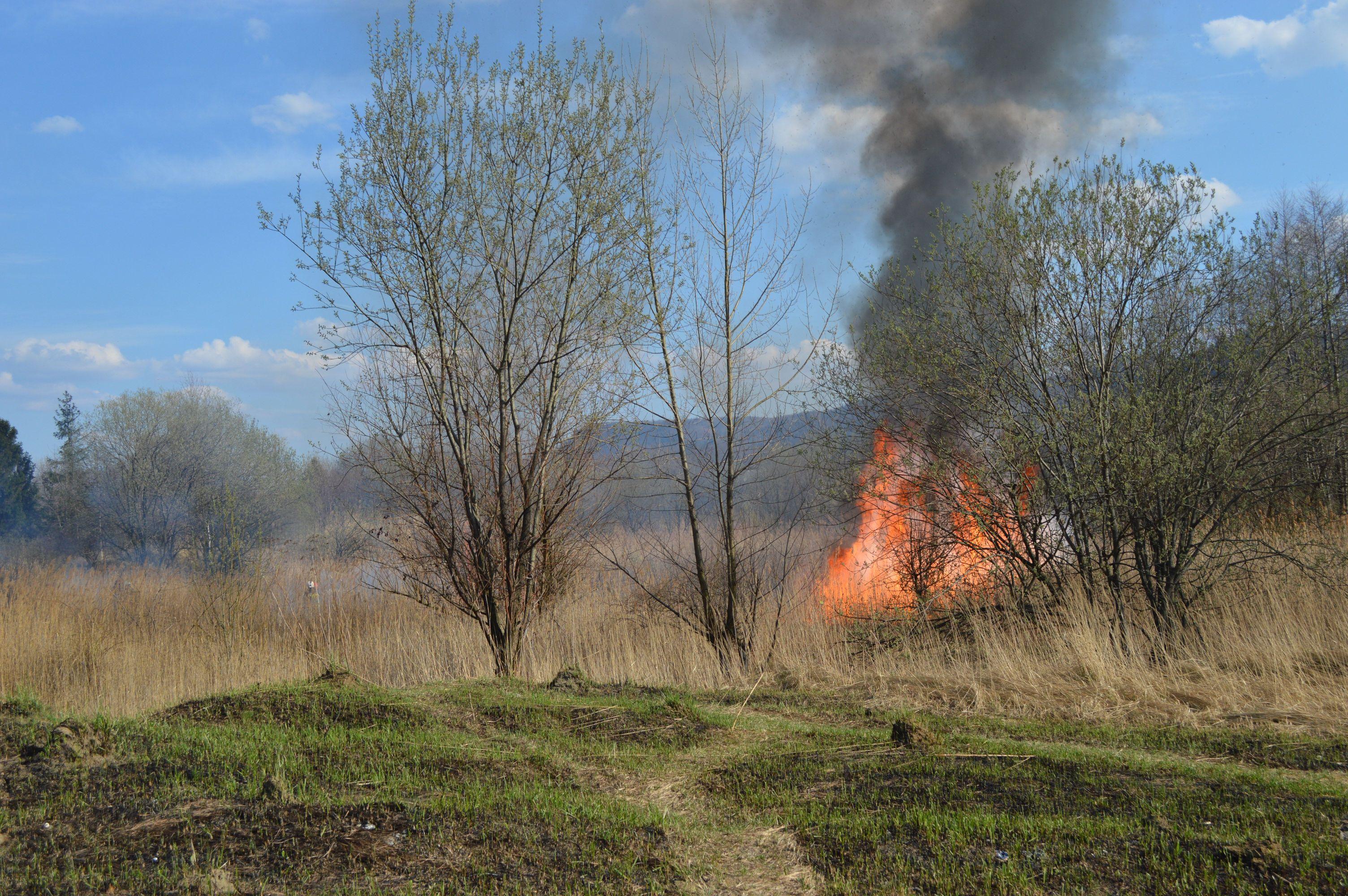 Dramatyczna statystyka pożarów - większość to podpalenia!