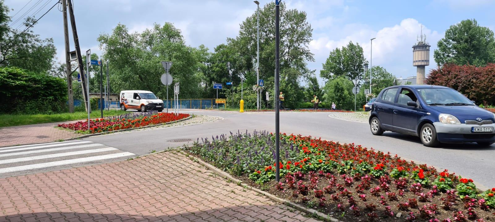 Kwiaty w Andrychowie. Tym razem taniej [FOTO]