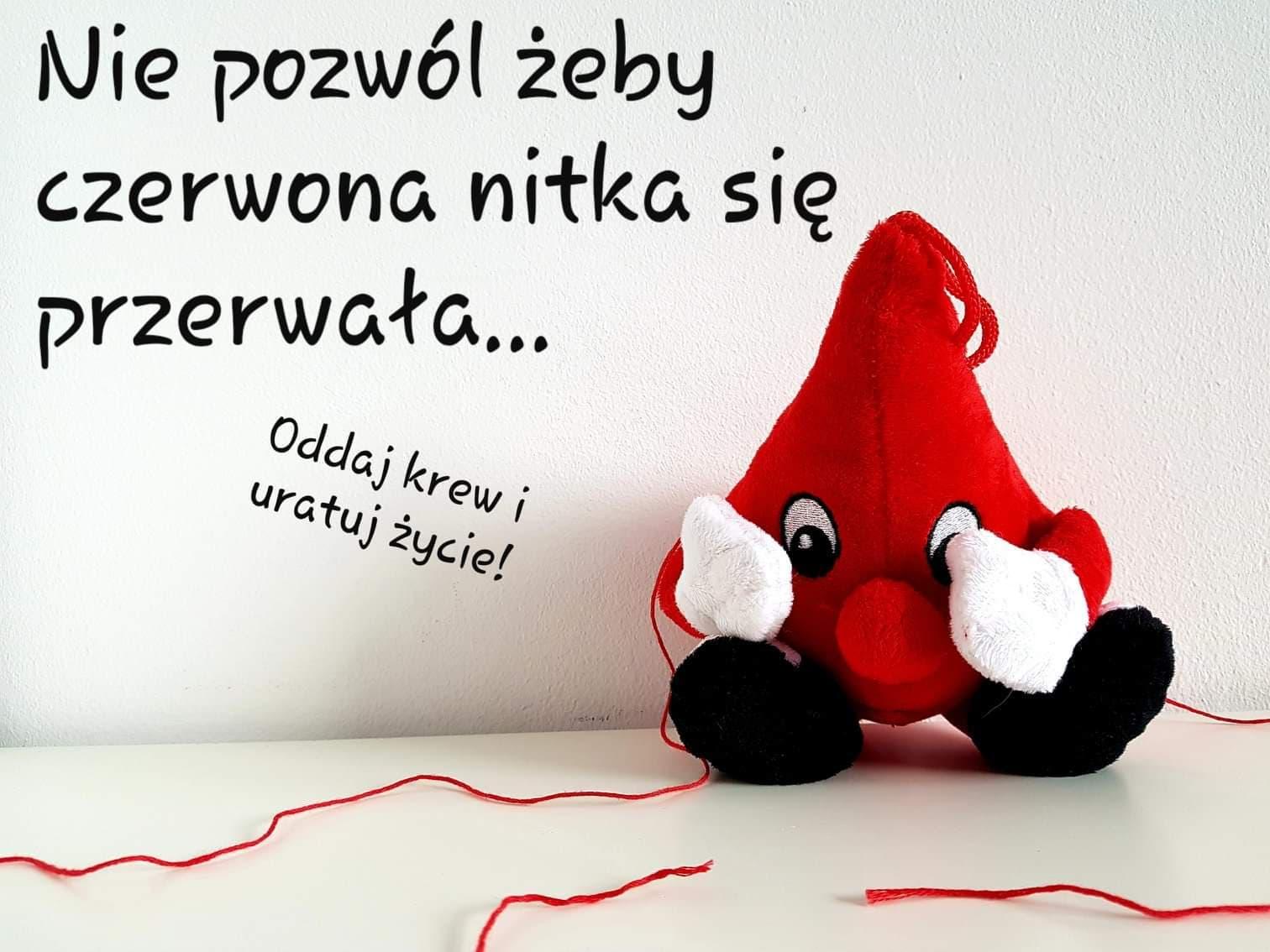 W środę Krewniacy Kotarbina będą oddawać krew