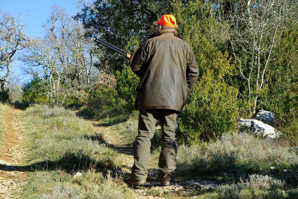 Rusza sezon polowań. Gdzie i kiedy lepiej nie wchodzić do lasu?