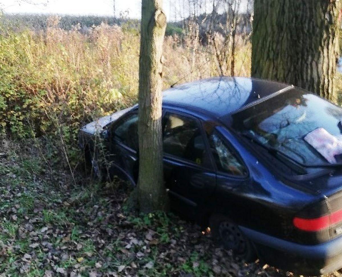 Drzewa stanęły na drodze pijanej sprawczyni kolizji